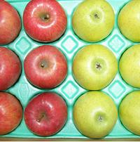 長野県産 代田農園の季節の「りんごセット(2種)」 3kg
