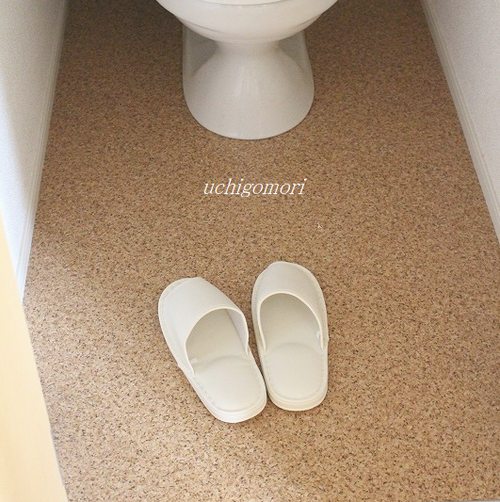 賃貸のトイレ