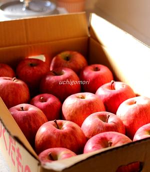 MUJIりんご