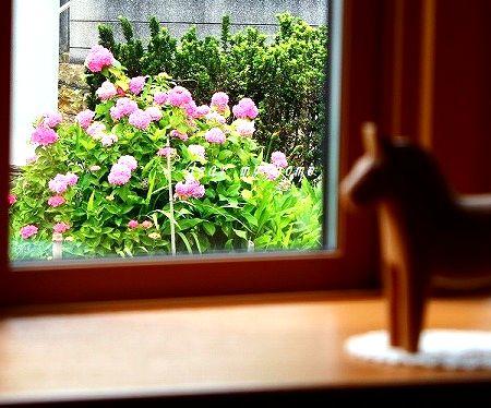 借景紫陽花