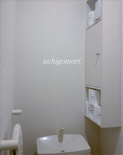 0119トイレ全体 (2)