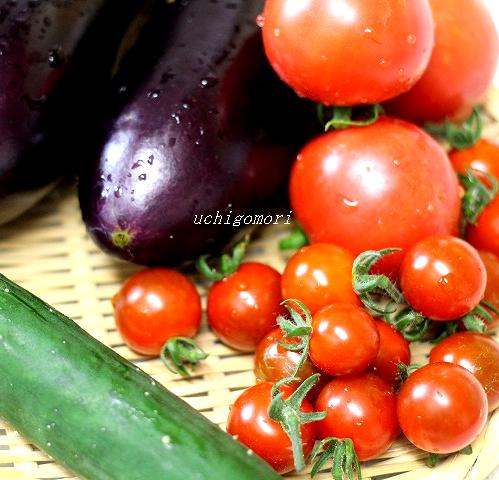 アップ野菜