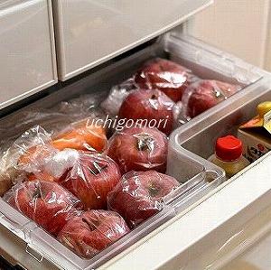 りんご冷蔵庫へ
