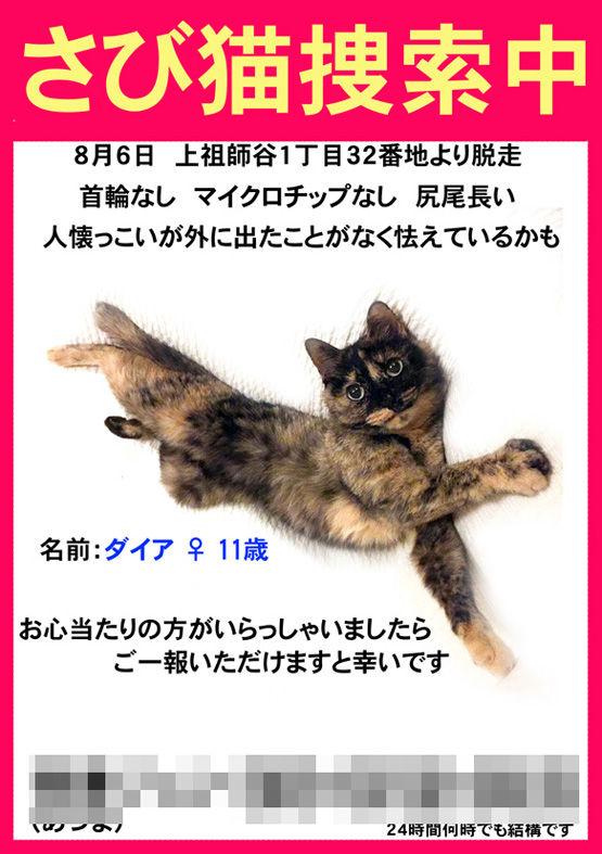 ダイア捜索チラシ-02