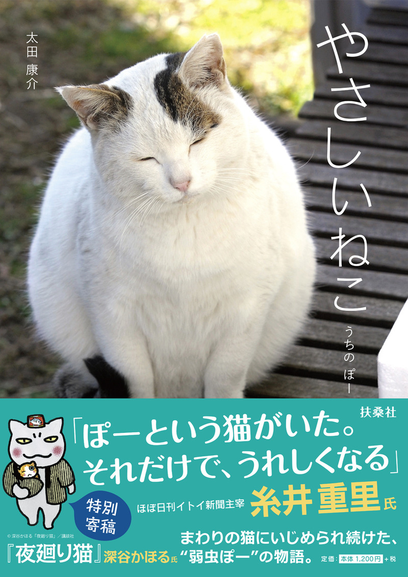 lCOVER (2)