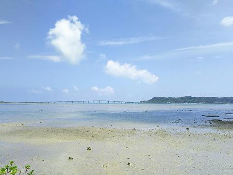 沖縄 五目ライトルアー