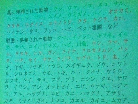 井の頭自然文化園InokashiraParkZoo講演会② (3)