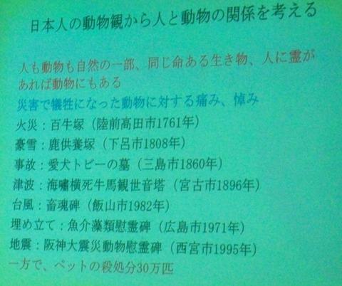 井の頭自然文化園InokashiraParkZoo講演会② (4)