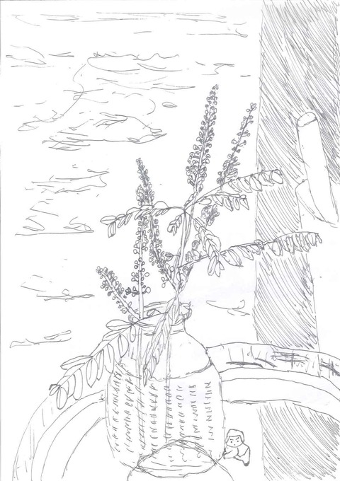 いけられた花と葉