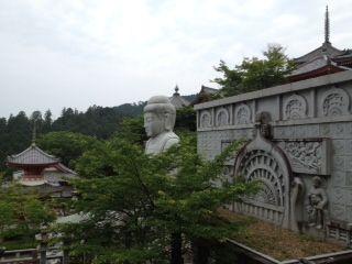 blog_120531_tsubosaka01