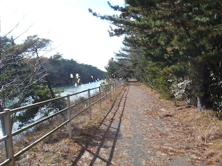 仙台亘理自転車道1