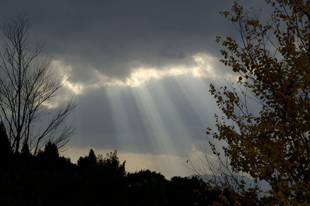 悠創の丘にて太陽光