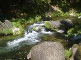 蝋燭庵前の渓流