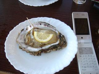 西浜の牡蠣