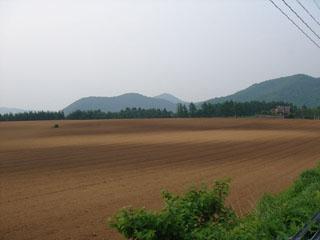 安比高原の畑