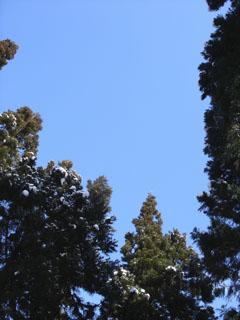 20060128西蔵王_青空