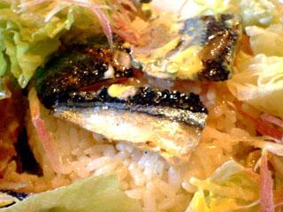 プチノエル秋刀魚のたたきサラダライスUP