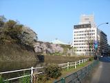 20090406TOKYOサイクリング_日本武道館