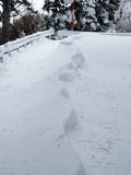 20100207_SNOW SHOE_2
