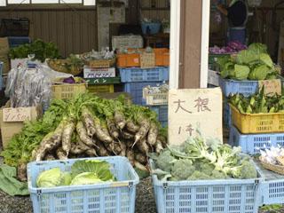野菜直売所2