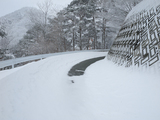 20100207_SNOW SHOE_4