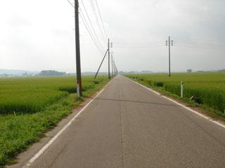 遊佐の田んぼ道2