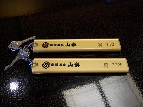 P1540099 (Custom)