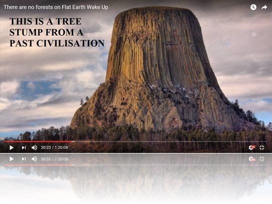 この地球に山や森は存在しない