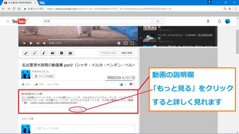 動画の詳細情報1