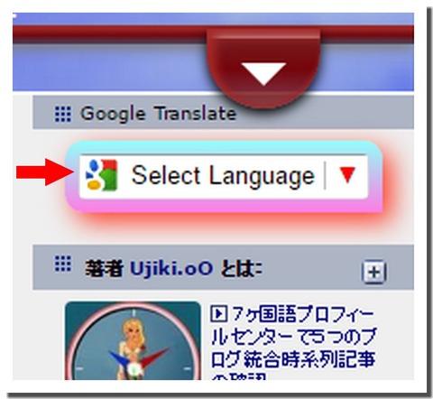 SelectLanguage