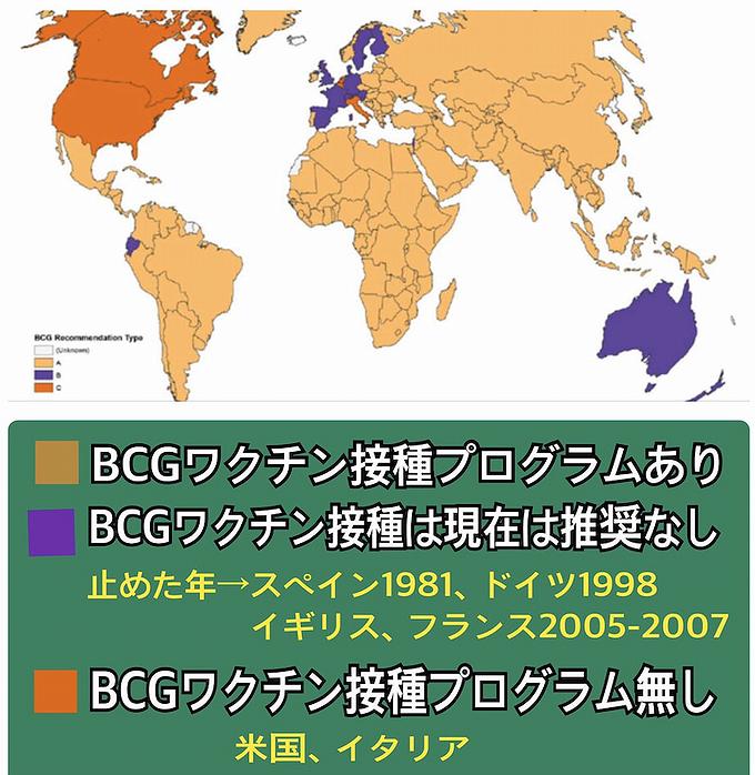 bcg 接種 し て ない