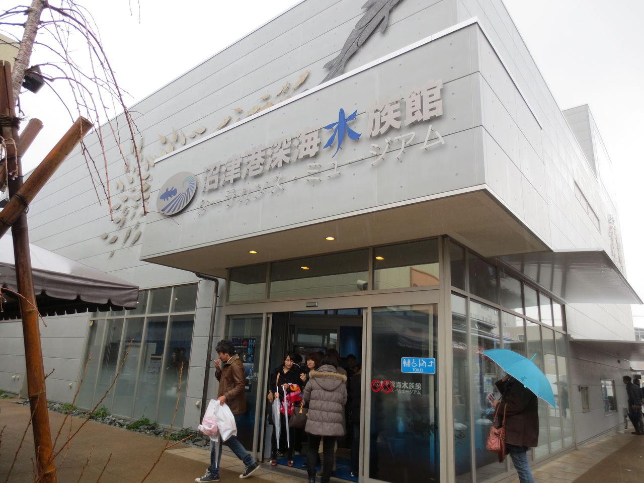 沼津 深海 水族館 沼津の水族館を遊び尽くしたい方必見!3つの水族館を徹底解剖!