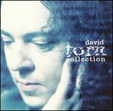 David Torn the collection