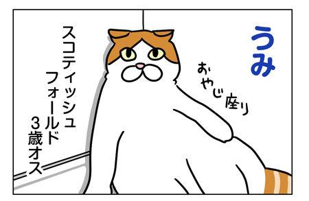 猫1_1_02