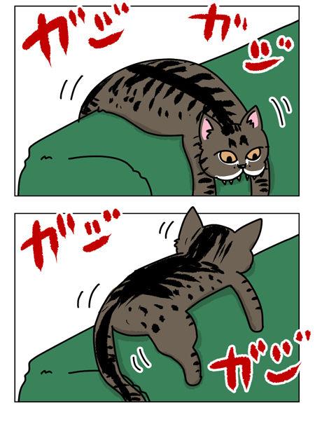 猫漫画001_1_03【猫漫画1】野性的なハルがハッスルした理由