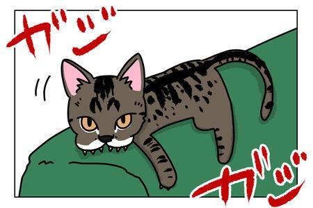 猫漫画001_1_02【猫漫画1】野性的なハルがハッスルした理由