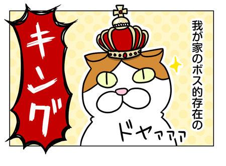 猫1_1_04