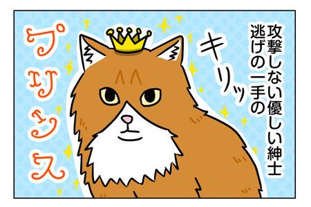 猫1_2_03