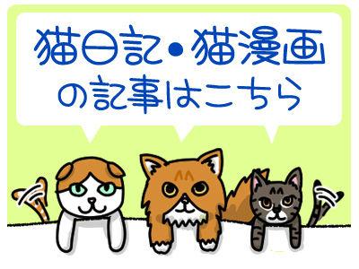 b400_300猫日記