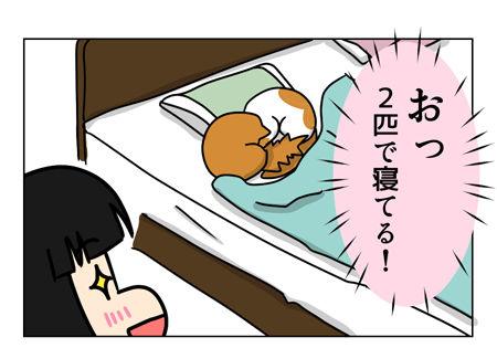 猫日記_1_01