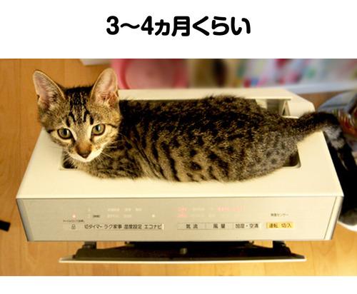 はる_空気清浄機3_01