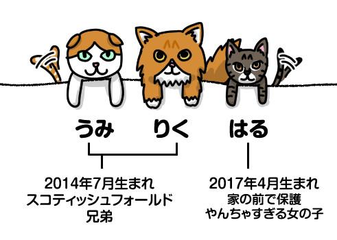 自己紹介_猫
