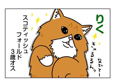 猫1_2_01