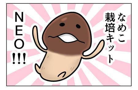 なめこ栽培キット_02