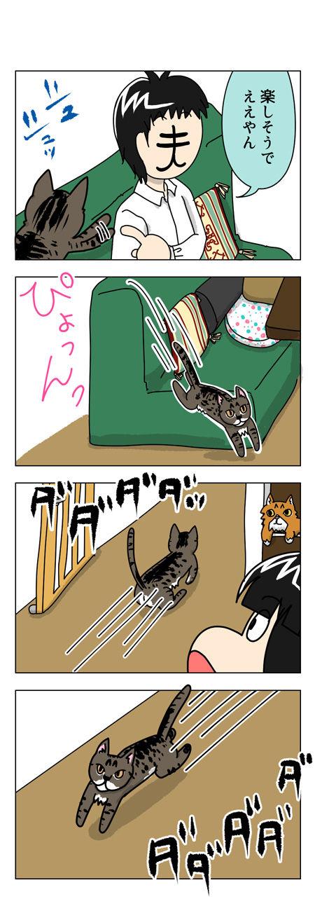 猫漫画001_2【猫漫画1】野性的なハルがハッスルした理由