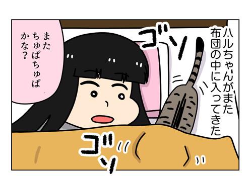 小悪魔猫ハル_1_01