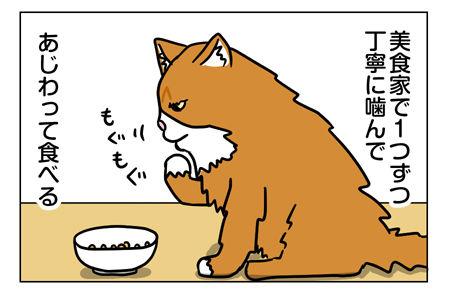 猫1_2_02
