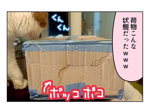 ぱん太さんからの贈り物_2_01