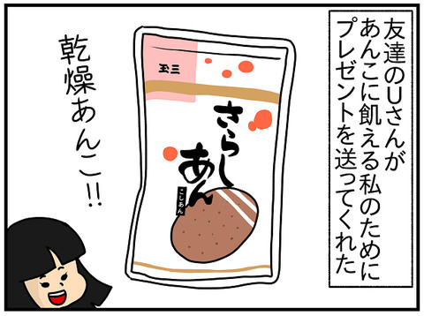 567.クリスの日本のお菓子空き袋コレクション