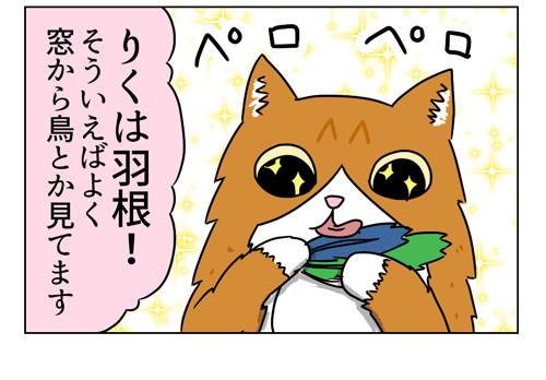 うちの猫たちが大興奮のおもちゃ_1_04